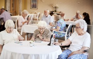 Mind and wellness for Seniors